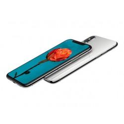 GRADO A IPHONE X 256GB SILVER RICONDIZIONATO